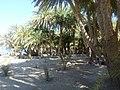 Holidays - Crete - panoramio (120).jpg