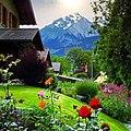 Home garden in Hunza.jpg