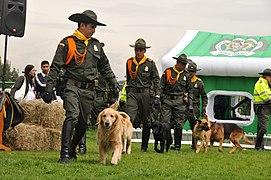 Homenaje a los animales héroes de Colombia (5748365742).jpg