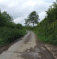 Hownel Lane - geograph.org.uk - 455510.jpg