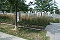 Hunters Point South Pk td (2019-09-09) 016 - Rail Garden.jpg