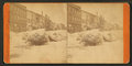 Ice storm, Hallowell, by A. F. Morse.png