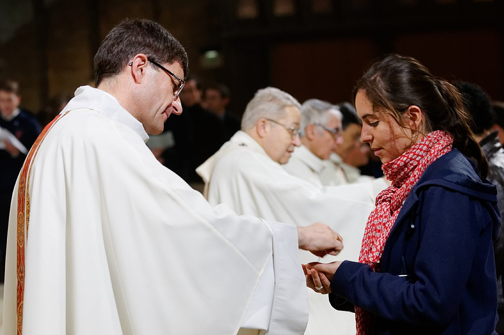 Ile-de-France students mass 2012-11-08 n34.jpg