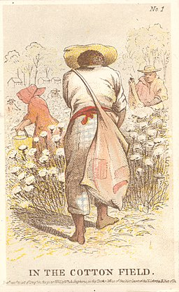 In The Cotton Field., ca. 1863 (5553520314)