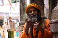 India DSC01255 (16535007818).jpg