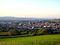 Ingelheimview.jpg