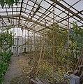 Interieur van de oude vrijstaande kas met gaashekken en begroeiing - Beesd - 20404857 - RCE.jpg