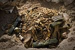 International bomb-squad detonates explosives, protects Afghanistan DVIDS353702.jpg