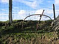 Iron Bedstead and Fence - geograph.org.uk - 355100.jpg