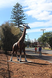An Iron Sculpture of a Giraffe on the Mike Turtur Bikeway in Glenelg East South Australia