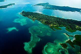 Bocas del Toro-San Bastimentos Island-San Blas mangroves