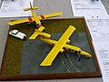 Islander-057 - Flickr - Ragnhild & Neil Crawford.jpg