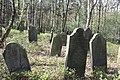 Jüdischer Friedhof Hoyerhagen 20090413 011.JPG