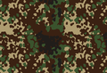 Japanese Winter Flecktarn.png