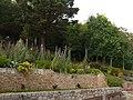 Jersey park - panoramio (1).jpg
