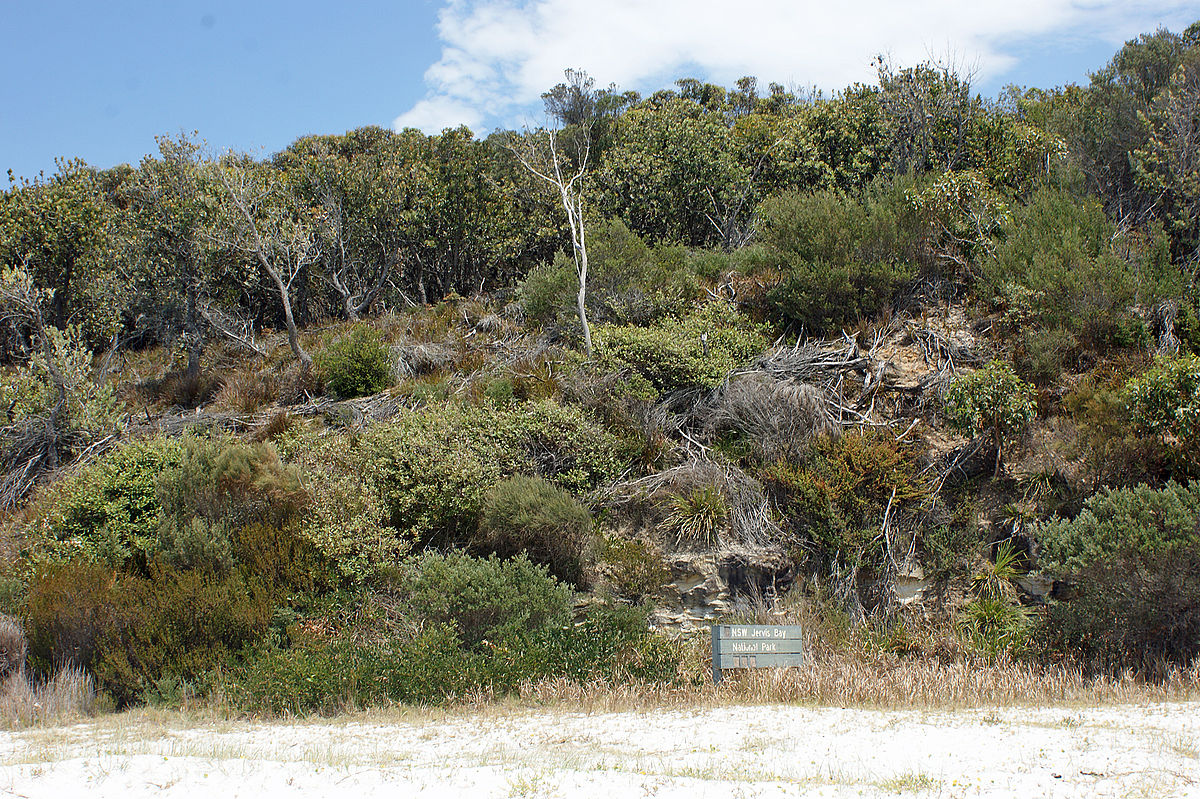 jervis bay territory latin dating site Jervis bay 274 jhelum 275 j t wing 278 jylland italian territory the site is under the protection of a joint french and american authority l/b/d.