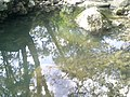 Jilotepec de Abasolo, State of Mexico, Mexico - panoramio (3).jpg