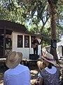 Joey Dillon singing at the Cowboy Festival.jpg