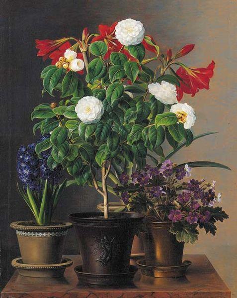File:Johan Laurentz Jensen - Camelias, amaryllis, hyacint og violer i dekorative potter på en marmor afsats.jpg