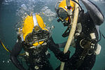 Joint UCT Diver Training 150113-N-YD328-026.jpg