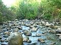 Jordan River26.JPG