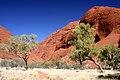 Kata Tjuta, Northern Territory - 10 (6103927409).jpg
