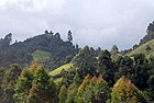 Muranga County showing the landscape