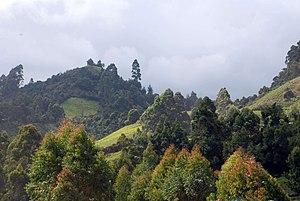 Muranga County - Murang'a County Landscape
