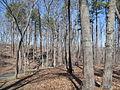 Kings Mountain National Military Park - South Carolina (8557812053) (2).jpg