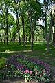 Kirovograd Dendropark 17 (YDS 4205).JPG