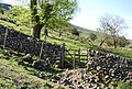 Kissing gate on the path up to Lingmell Gill - geograph.org.uk - 1328633.jpg
