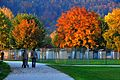 Klagenfurt Wörthersee Strandbad autumn mood 11102008 74.jpg