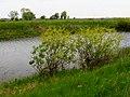 Koloden lake4.jpg