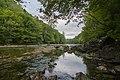 Kolpa River 1187.jpg