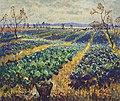 Konstantin Gorbatov - Cabbage Field.jpg