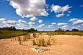 Kruger National Park Landscape 2.jpg