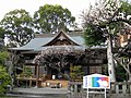 Kumamoto daijingu.jpg