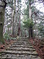 Kumano Kodo pilgrimage route Daimon-zaka World heritage 熊野古道 大門坂42.JPG