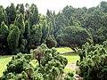 Kunming Botanical Garden - DSC02721.JPG