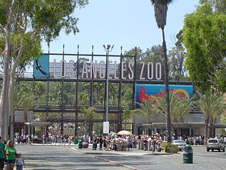 Los Angeles Zoo - A summer crowd at the LA Zoo