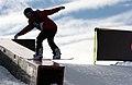 LG Snowboard FIS World Cup (5435330167).jpg