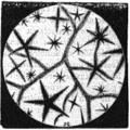 LaNature1873-365-LumièrePolarisée4.png