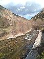 La Tet passat Vilafranca de Conflent.jpg