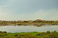 La lagune de korba.jpg