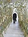 La tristesse dun visiteur face à la transformation de la matière végétale (Palais de Tokyo) (8209862895).jpg