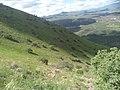 Ladera noroeste Cerro Grande.jpg