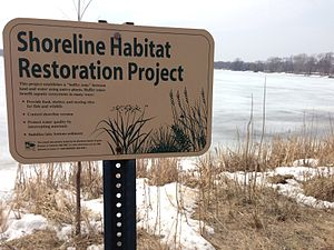"Lake Hiawatha - ""Shoreline Habitat Restoration Project. This project establishes a 'buffer zone' between land and water using native plants. Buffer zones benefit aquatic systems in many ways: provide food, shelter, and nesting sites for fish and wildlife; control shoreline erosion; protect water quality by intercepting nutrients; stabilize lake bottom sediment. This project was partially funded by the Shoreline Habitat Program, Division of Fisheries, Minnesota Department of Natural Resources."""