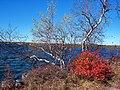 Lake Maratanza - panoramio.jpg