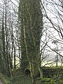 Land Mill - geograph.org.uk - 326704.jpg