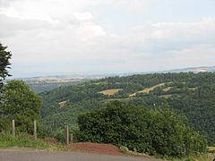 Landscape-IMG 6921.JPG